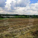 ban foo agricultural  agricultural lands 6 acres area of ground sale from rm 1,960,200 at jalan ban foo ulu tiram, johor, malaysia #4210