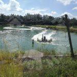 93 kota tinggi fish or prawn farming agricultural landss 93 acres land-area sale price rm 15,810,000 in senai-desaru 81800 ulu tiram, johor, malaysia #4725