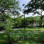 kulai cluster house raintree residence near public bank 2 storey mansion residence 2875 square feet builtup 2500 sq.ft builtup rental from rm 2,300 in jalan iris, indahpura near aeon kulai #5050