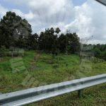 segamat 50 durian farm landss 50 acres area of ground selling price rm 15,500,000 at segamat, jementah #7385